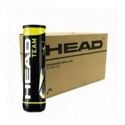 Bola de Tênis Head Team 4 bolas - Caixa com 18 tubos