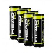 Bola de Tênis Head Team - Pack com 6 tubos