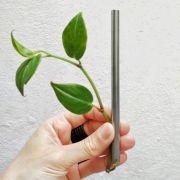 Canudo Inox Smoothie - 10mm - SALVIA