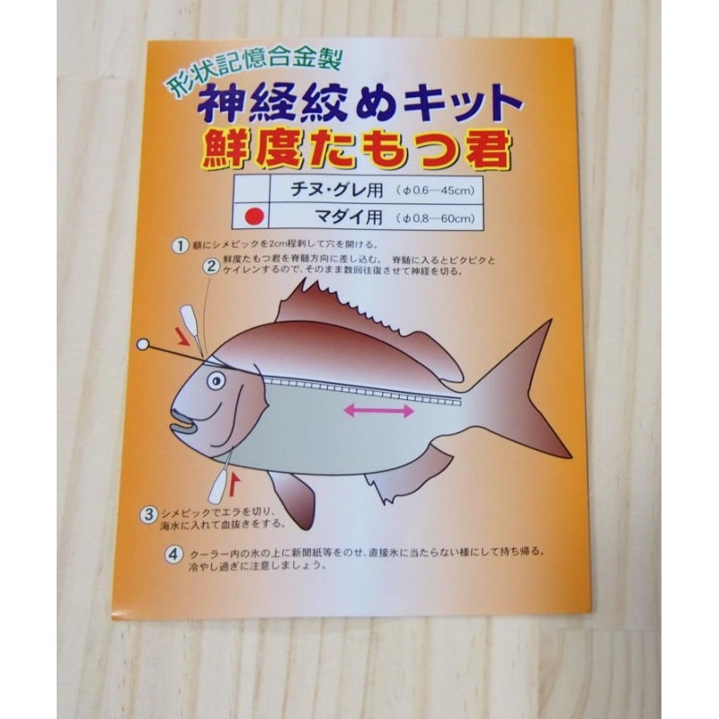 Kit para Ikejime Shinkeijime Yoshimi - 60cm Japao