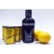 Kit Gin Bulldog, Tônicas Schweppes, Limão + Especiarias