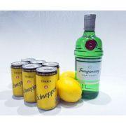 Kit Gin Tranqueray, 6 Tônicas Schweppes, Limão + Especiarias