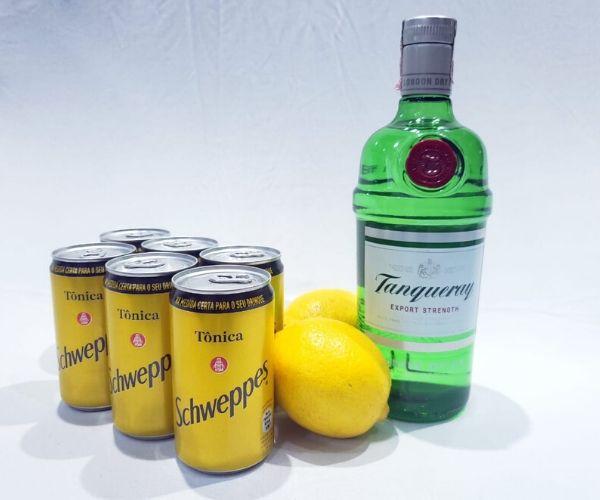 Kit Gin Tranqueray, 6 Tônicas Schweppes, Limão + Especiarias  - Octo em Casa