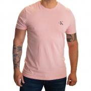 Camiseta Calvin Klein Re Issue