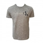 Camiseta CKJ MC Regular Logo Flam