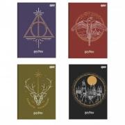 Caderneta Costurada Jandaia Harry Potter