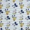 16 mickey e pluto