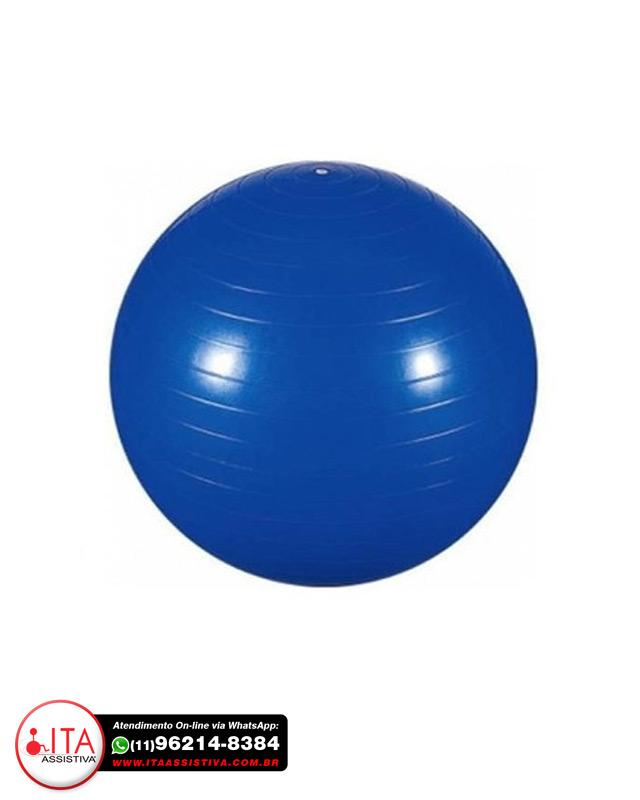 Professional Fisioball com Pinos para Massagem FisioPauher - Ref.: FG 21