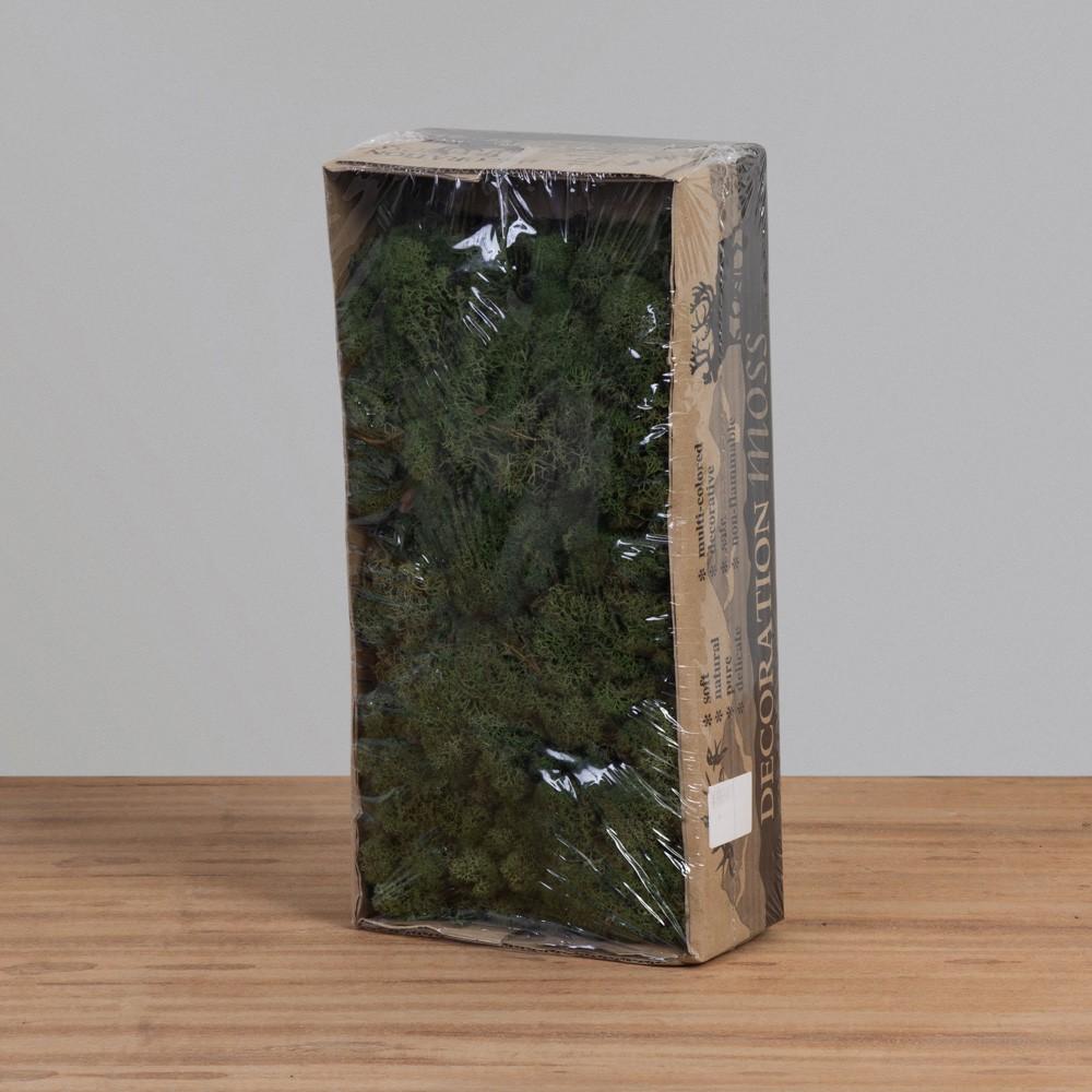 Musgo de Rena Verde Musgo