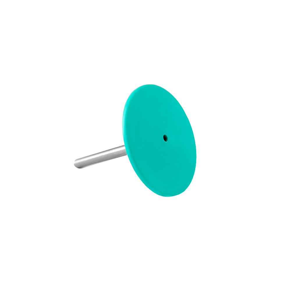 Disco de Pedicure em Polímero Staleks Pro com 5 refis -20 MM- PPDSET-20