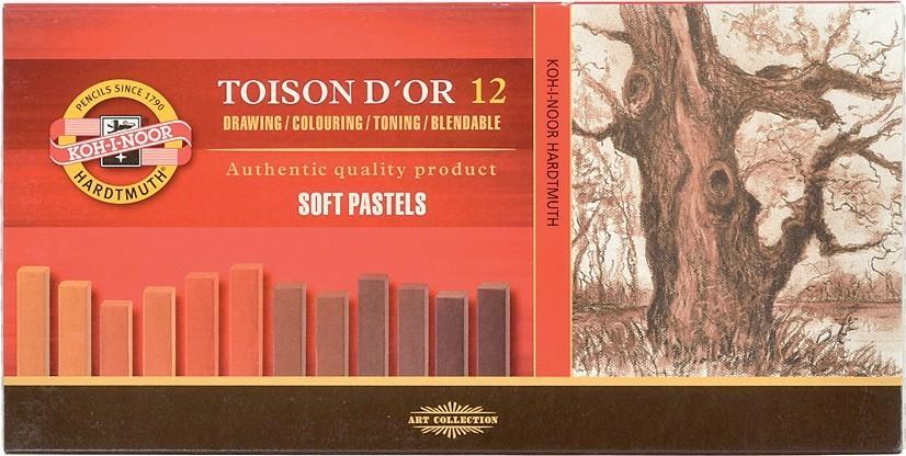 Giz Pastel Seco Carré 12 Tons de Marrom Toison Koh-I-Noor