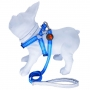 Peitoral Guia Para Cachorros Anymous Silver Azul - P