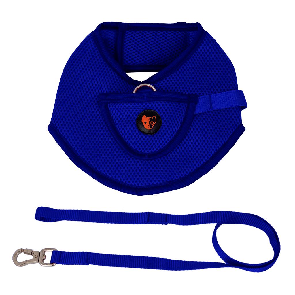 Colete Peitoral com Guia Anymous Speciale Azul - G