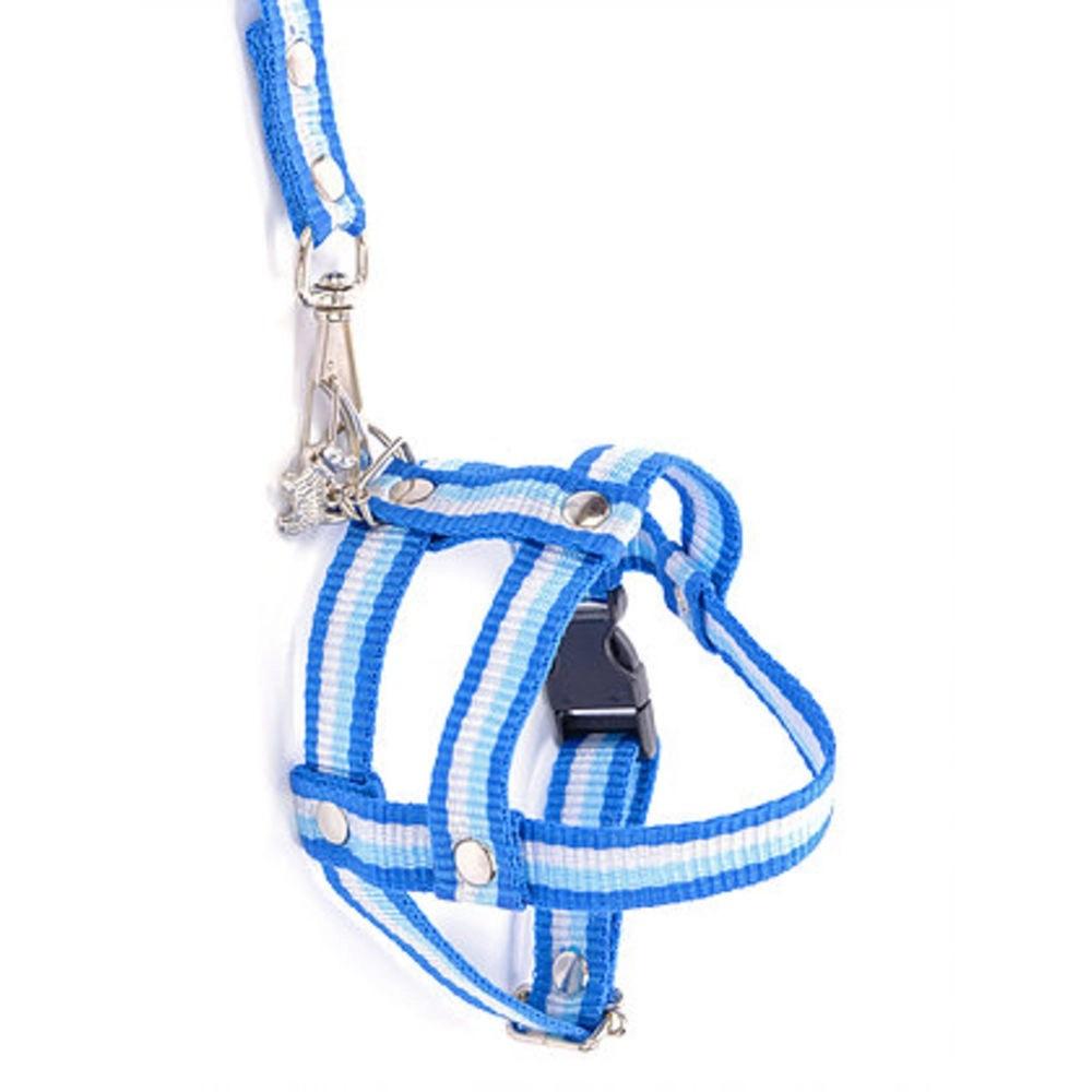 Peitoral Guia p/ Cães Speciale Azul Listrada Tam M Pingente