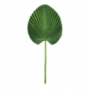 Planta artificial Latania 55 cm
