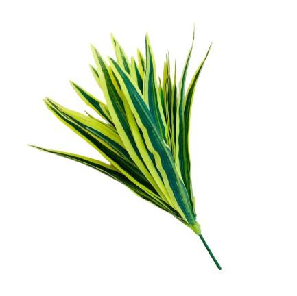 PLANTA ARTFICIAL - PLEOMELE