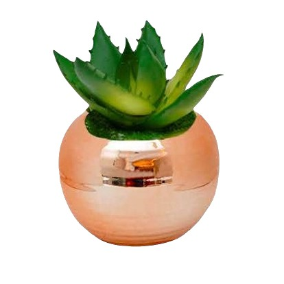 Vaso de porcelana com mini suculenta artificial