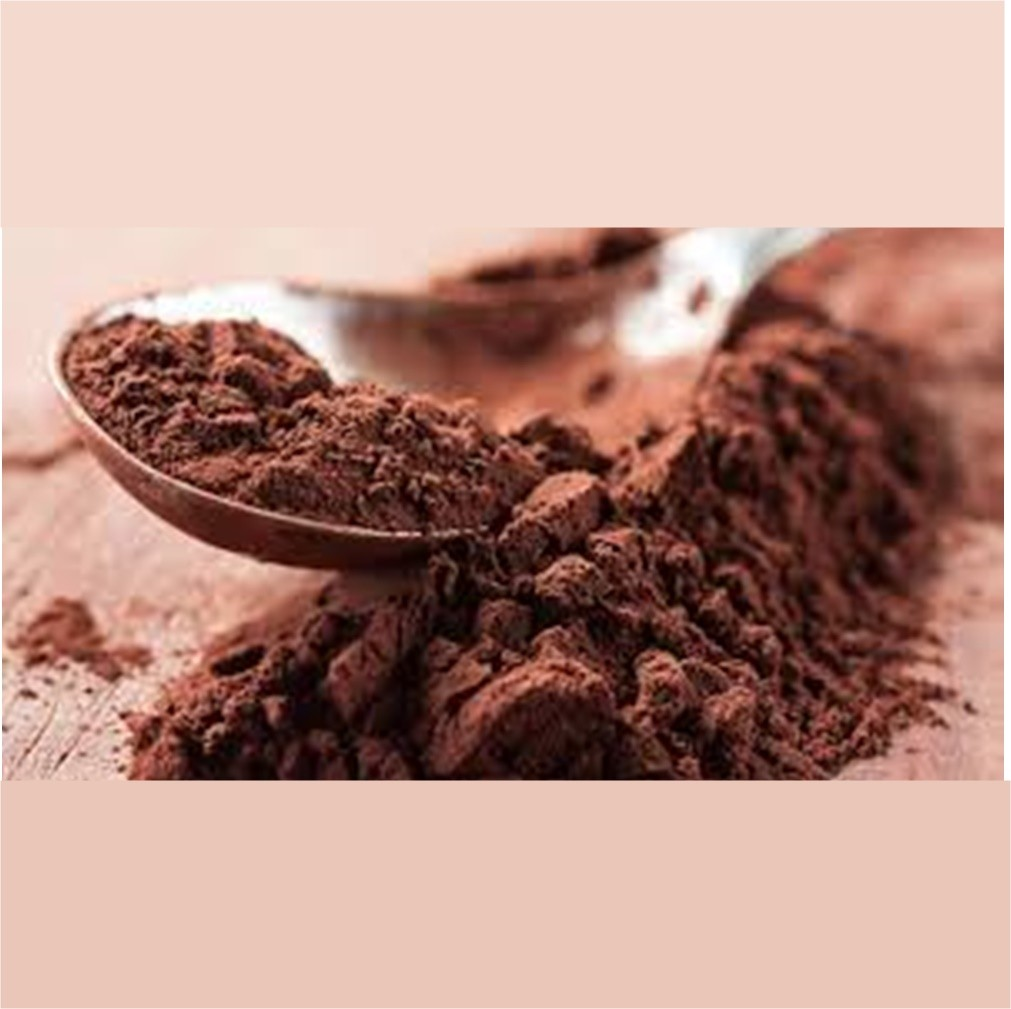 CHOCOLATE EM PÓ 50% 1KG SICAO