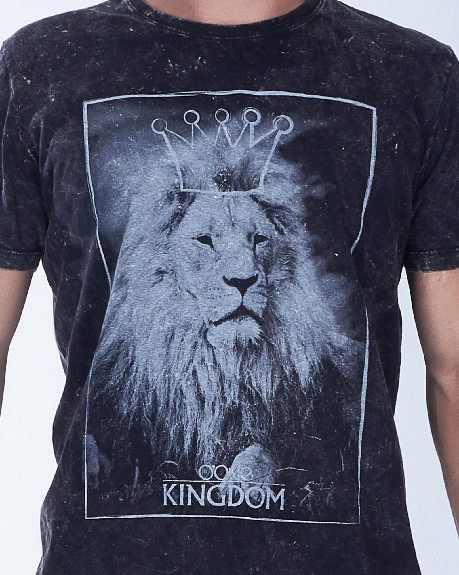 CAMISETA LION KINGDOM