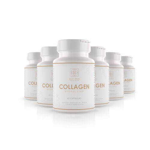 6 Colágenos