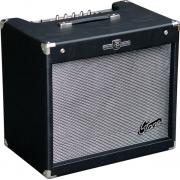 Cubo Staner Gt200 Para Guitarra 15