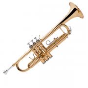 Trompete Michael Sib Laq  Wtrm30N
