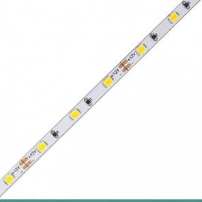 Fita LED eklart chip 2835 60Leds/m 5W/m 4MM 12V IP20