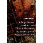 A biopolítica e o paradoxo dos Direitos Humanos no sistema penal custodial brasileiro