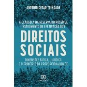 A cláusula da reserva do possível instrumento de efetivação dos direitos sociais: dimensões fática, jurídica e o princípio da proporcionalidade