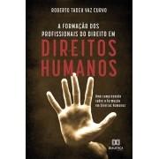 A formação dos profissionais do direito em direitos humanos: uma compreensão sobre a formação em Direitos Humanos