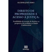 Direito de Propriedade e acesso à Justiça: possibilidade da exceção de domínio na perspectiva da jurisdição no Estado Constitucional