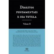 Direitos fundamentais e sua tutela - Volume 2