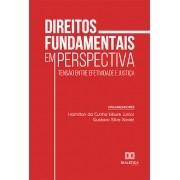 Direitos Fundamentais em perspectiva: tensão entre efetividade e justiça