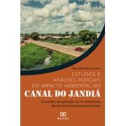 Estudos e análises periciais do impacto ambiental no Canal do Jandiá: causador de poluição do rio Amazonas devido às invasões permanentes