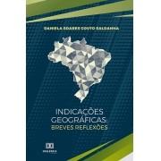 Indicações geográficas: breves reflexões