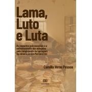 Lama, Luto e Luta: os impactos psicossociais e o enfrentamento dos atingidos pelo rompimento da barragem da mineração e