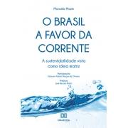 O Brasil a favor da corrente: a sustentabilidade vista como ideia matriz