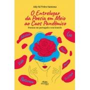 O entrelugar da poesia em meio ao caos pandêmico: poesias em português e em francês