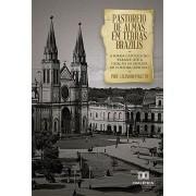 Pastoreio de almas em Terras Brazilis: a igreja católica no ?Paraná? até a criação da diocese de Curitiba (XVII-XIX)