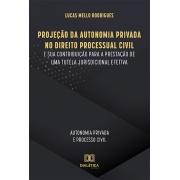 Projeção da autonomia privada no direito processual civil e sua contribuição para a prestação de uma tutela jurisdicional efetiva: autonomia privada e processo civil