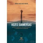 Vozes submersas: políticas públicas, desenvolvimento e resistência lá na Morada