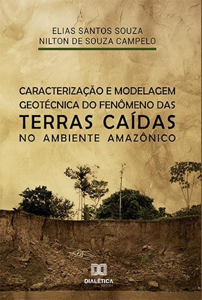 Caracterização e modelagem geotécnica do fenômeno das terras caídas no ambiente Amazônico