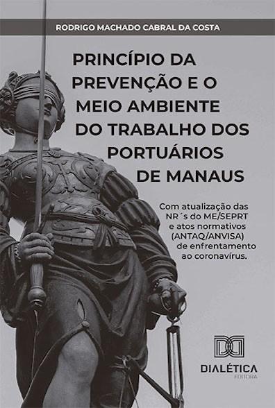 Princípio da prevenção e o meio ambiente do trabalho dos portuários de Manaus