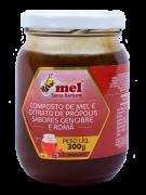 Mel com Extrato de Própolis sabor gengibre e romã - 300g