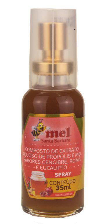 Spray de mel com própolis sabor gengibre, romã e eucalipto - 35 ml