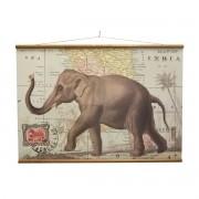 Pôster (Elefante)