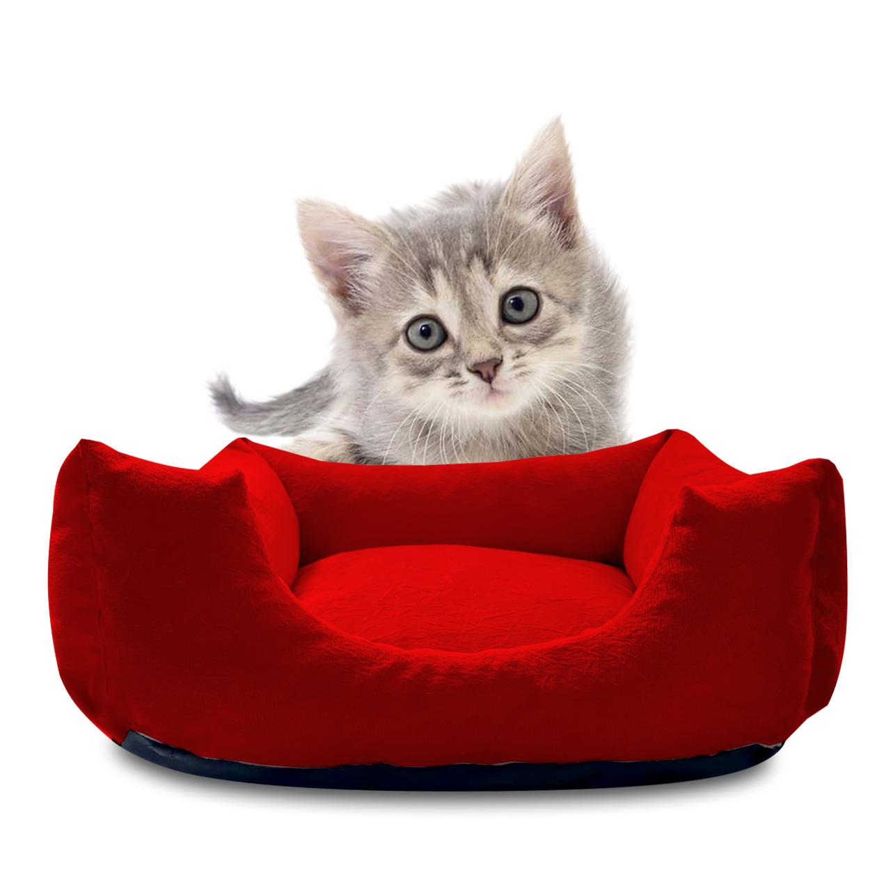 Caminha Pet de Gato em Suede Vermelho Gateza Pet Shop 50 m