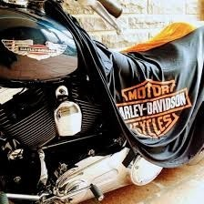 CAPA PARA COBRIR MOTO HARLEY DAVIDSON FXDR 114 COM LOGO - TECIDO DRY (LYCRA) - PERMEAVEL