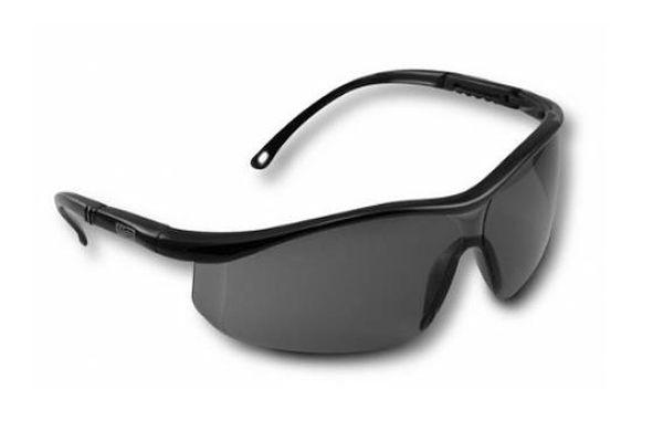 Óculos de Segurança BlueBird Anti Risco Cinza - MSA
