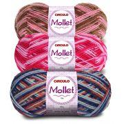 Lã Mollet Mesclada 40g